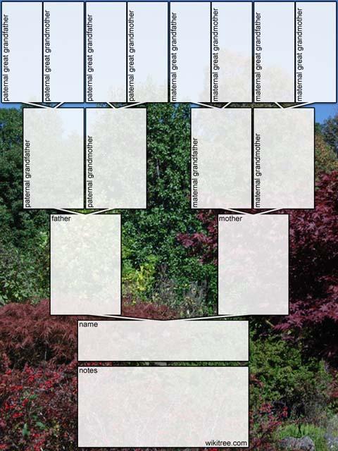 family tree templates free. family tree templates free.